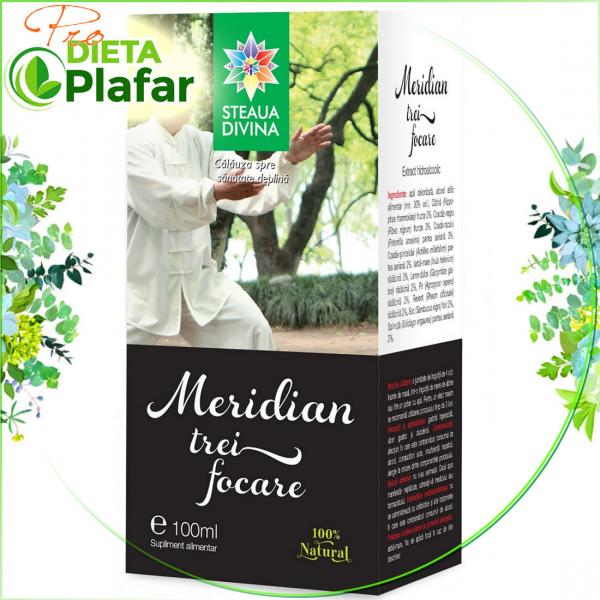 Meridian 3 focare pentru sinuzita, reumatism cu Catina 100 ml