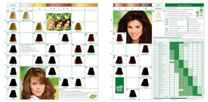 Vopsea de Par HennaPlus Long Lasting Colour - Warm Brown 4.45-big