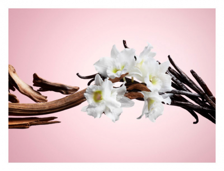 Apa de Toaleta NUVO Parfums Magical Pour Femme EDT, 100 ml1