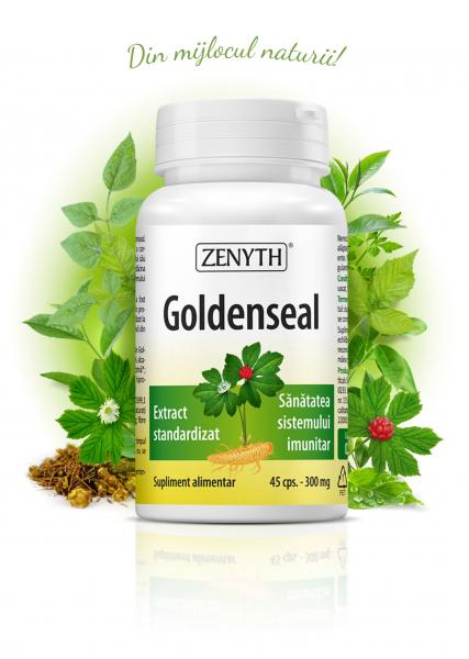 Supliment alimentar, Goldenseal (300 mg) - 45 capsule [0]