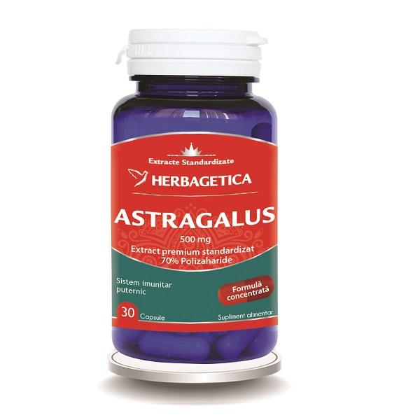 Supliment alimentar, Astragalus (extract premium cu 70% Polizaharide) 500 mg - 30 capsule [0]