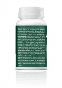 Supliment alimentar, Zenyth ArtroHelp Pain (500 mg) - 30 capsule [3]