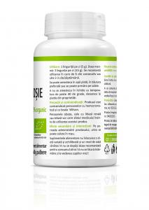 Bio Sfecla Rosie - 60 g (pulbere) [3]