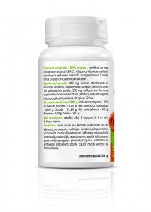 Ganoderma Reishi Bio (300 mg) - 60 capsule [1]