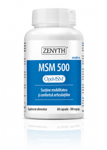Supliment alimentar, MSM 500 (500 mg) - 60 capsule [0]