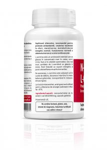 Supliment alimentar, N-Acetyl L-Carnitine (550 mg) - 60 capsule [1]