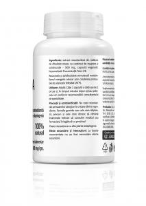 Supliment alimentar, Rhodiola (500 mg) - 60 capsule [1]