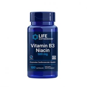 Supliment alimentar, Vitamina B3, Niacina (500 mg), Life Extension Vitamin B3 Niacin - 100 capsule (100 doze) [0]