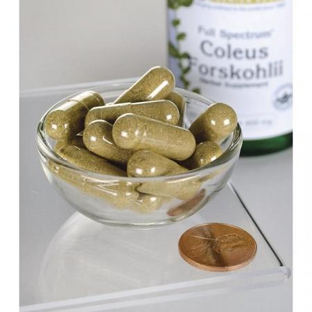 Supliment alimentar, Coleus Forskohlii (400 mg), Swanson Full Spectrum Coleus Forskohlii - 60 capsule (60 doze) [2]