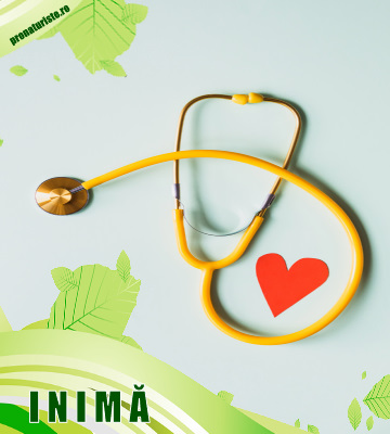 Produse naturiste care ajuta inima si circulatia sangelui.