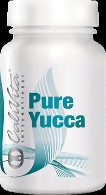 Pure Yucca (100 capsule)Yucca pentru detoxifiere naturala [0]
