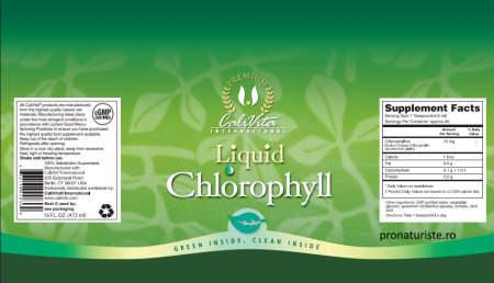 Liquid Chlorophyll CaliVita (473 ml) clorofilă lichidă [1]