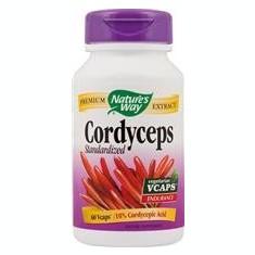 Cordyceps 500mg 60vcps Secom [0]