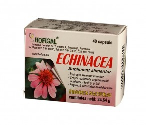 Echinaceea 40cps Hofigal [0]
