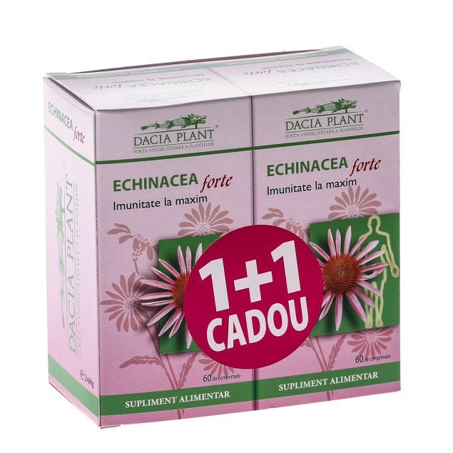 Echinaceea Forte 60cpr 1+1gratis Dacia Plant [0]