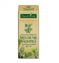 Extract Vita De Vie salbatica 50ml Plant Extrakt [0]
