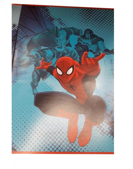 Caiet A4 matematica Spiderman 80 file 0