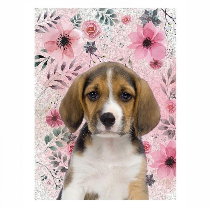 Jurnal Paso Dog, 12x17 cm 0