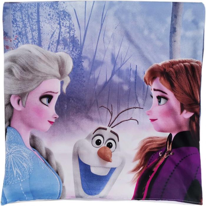 Lenjerii de pat copii, Frozen 2, microfibra 1