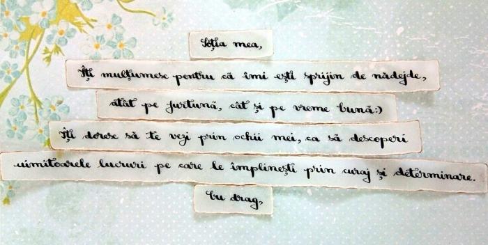 Scrisoare cadou pentru sotie - puzzle in mini-borcan (model 6) [1]