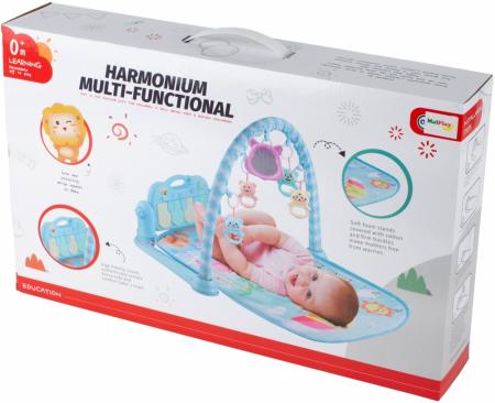 Centru de Activitati Bebe Saltea Cu Pian [6]