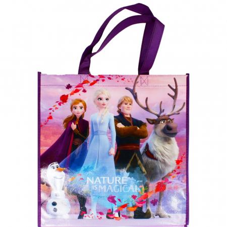 Sacosa Frozen Disney [2]