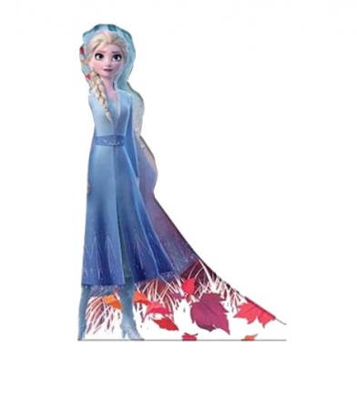 Trusa desen Frozen 56 piese3