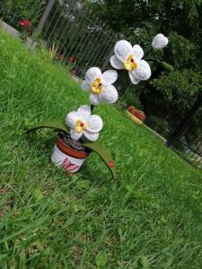 Orhidee croșetată handmade 3 flori5