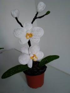 Orhidee croșetată handmade 2 flori3