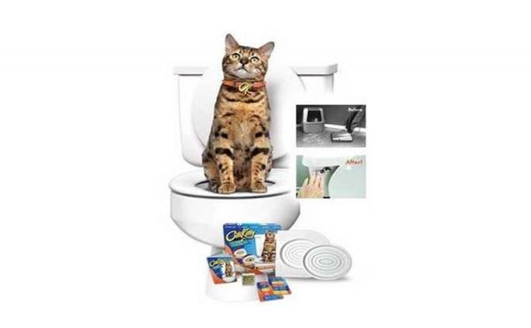 Twitter E-mail Citi Kitty - kit pentru educarea pisicilor la toaleta [0]