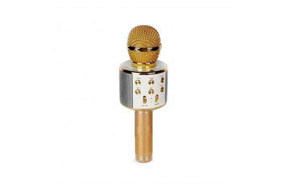 Microfon Wireless Kararoke WS-858 ,Bluetooth Card SD Gold [0]