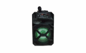 Boxa portabila Karaoke LT-819 [1]