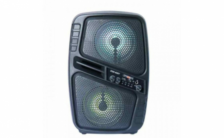 Boxa portabila 150W PMPO microfon si telecomanda ZQS-6207 [1]