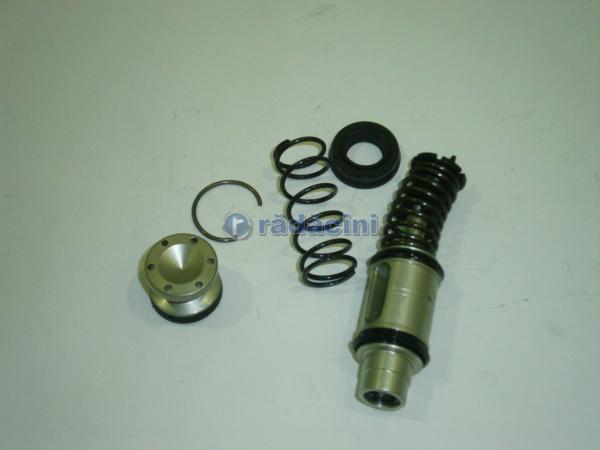Piston cilindru frana cod 427482 1