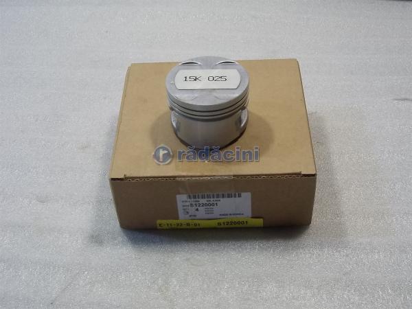 Piston motor R1 (025)  15 cod S1220001 0