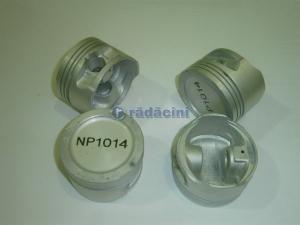 Piston motor R2 (050)   - cod NP10140
