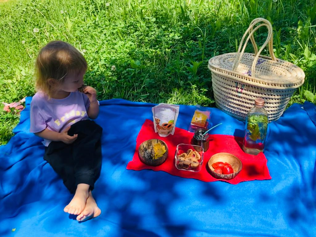 Un picnic sanatos in padure