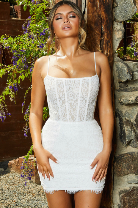 ROCHIE LACE IS MORE SEMI SHEER LACE MINI 0
