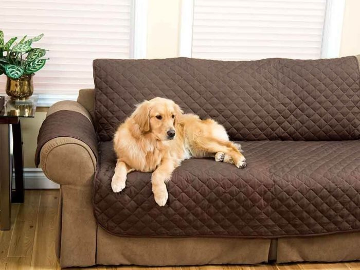 Husa canapea impotriva petelor si parului de animale, Protects your couch [1]