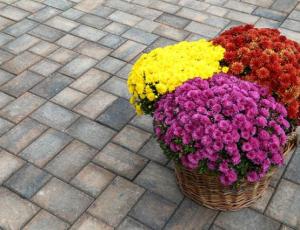 Pavaj Travia mix color, grosime 6 cm [2]
