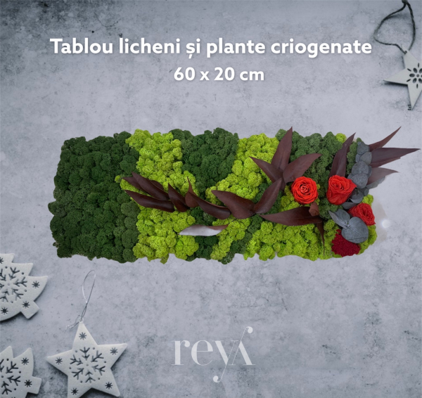 Tablou licheni si trandafiri [0]