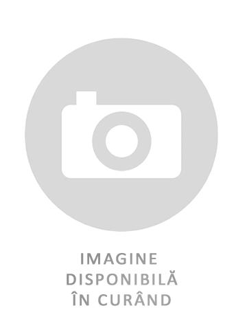 Anvelope MICHELIN AGILIS 3 [0]