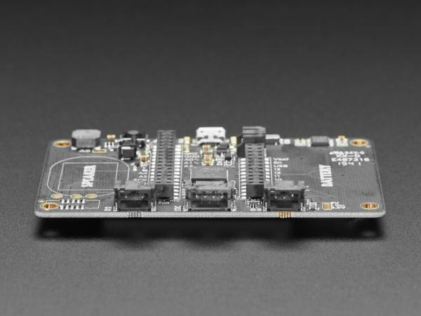 Placa Adafruit EdgeBadge TensorFlow Lite pentru microcontrollere 5
