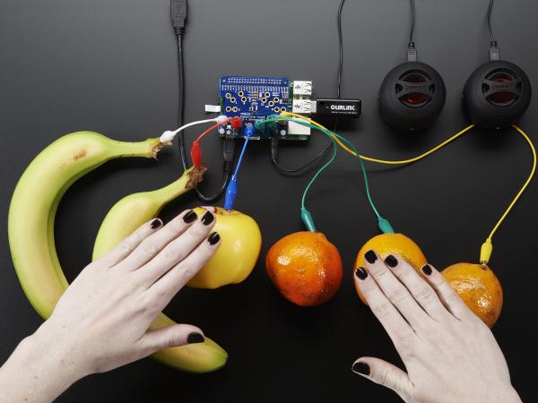 Capacitive Touch HAT pentru Raspberry Pi - Mini Kit - MPR121 5