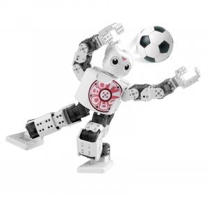 Kit robot umanoid Robotis Mini [2]