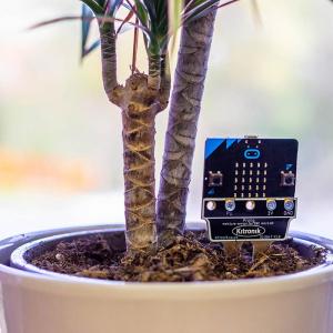 Senzor umiditatea solului Kitronik Prong pentru BBC micro:bit0