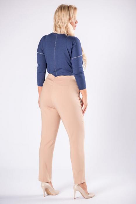 Pantaloni eleganti clasici cu pense, bej 1