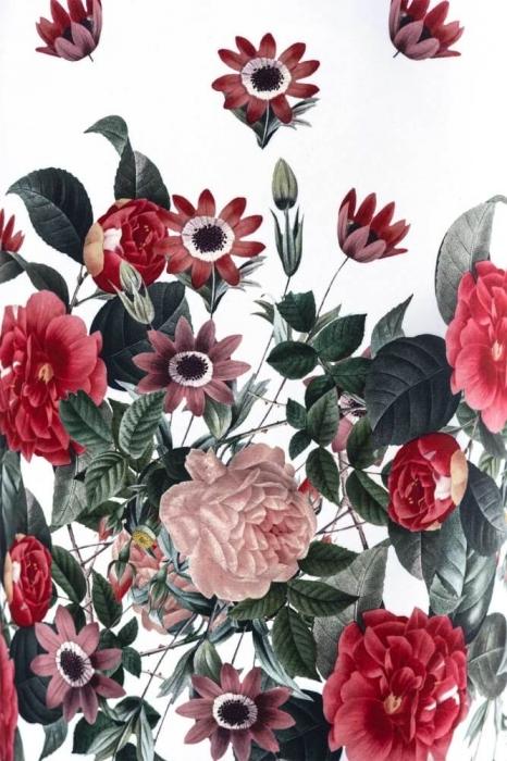 Rochii ieftine - Rochie de zi cu imprimeu floral Cristina alb 2