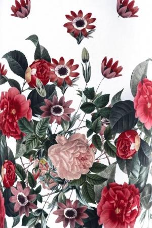 Rochie casual cu imprimeu floral Cristina, alb/rosu2