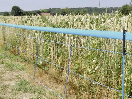 Plasa gard electric, animale salbatice, 50 metri [4]